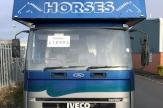 pgk-horsebox-front