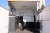 dressage horsebox horse area