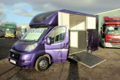Luxury 3.5t Horsebox for sale
